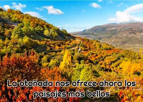 otonada ofrece paisajes bellos