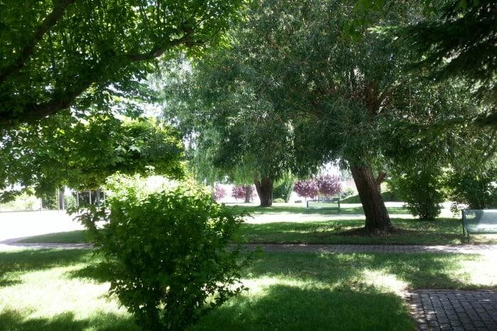 jardin con sombra